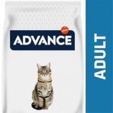 ADVANCE CAT ADULT POLLO