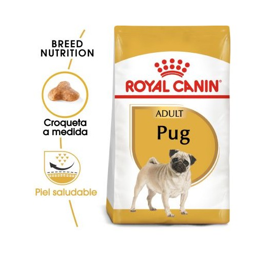 Royal Canin Carlino Adult