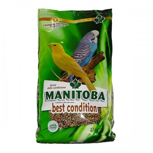 MANITOBA BEST CONDITION 2.5kg