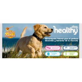 VISAN DOG HEALTHY